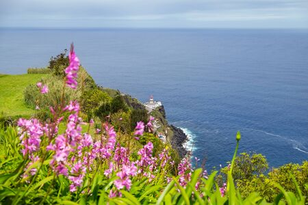 View of pink flowers to background lighthouse and the ocean from a cliff in the city of Nordeste, Azores, Portugal Stock fotó