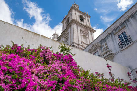Flowers on background view in Pantheon and the Aflama, Lisbon the old city center. Banco de Imagens