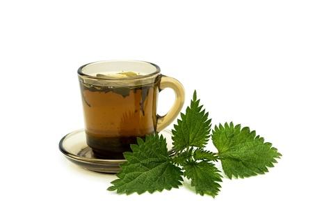 Taza de t� con hojas de ortigas en un fondo blanco