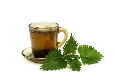 Tea cup with nettles leaves on a white background photo