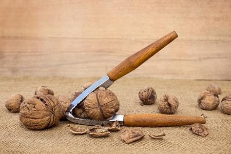 Walnuts on canvas, close up
