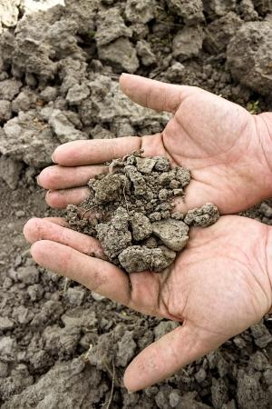 ひびの入った土地の上の手の乾燥土壌 写真素材