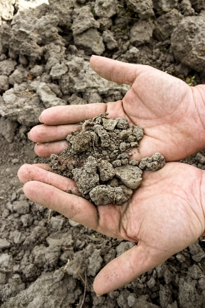 dry soil in hands over cracked land