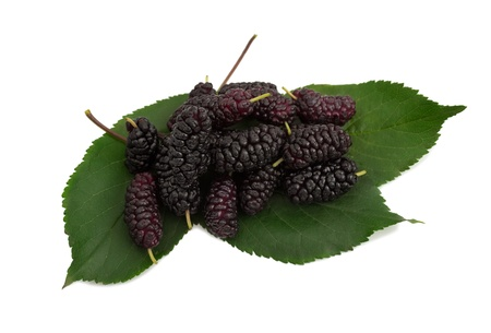 Group of mulberries with a leaves  Isolated on a white background