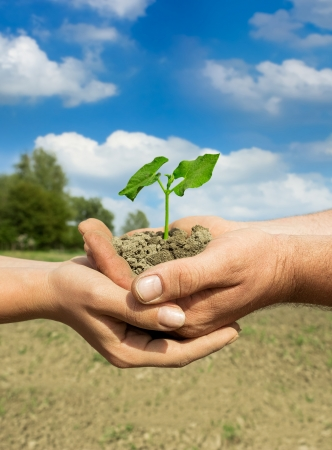 couple farmers holding young green plant