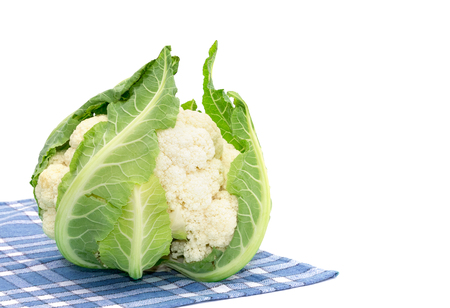 Cauliflower isolated on white background photo