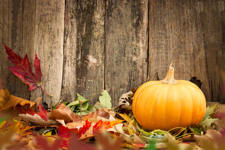rusty background: pumpkins and autumn leaves on wooden background Stock Photo