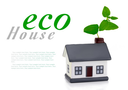 ecofriendly: eco house or eco home with a leaf above the roof environmentally low-impact and eco-friendly construction Stock Photo