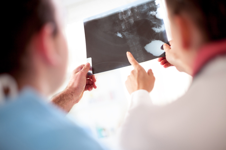 opinions: colleagues doctors exchanged opinions looking at x-ray or roentgen image
