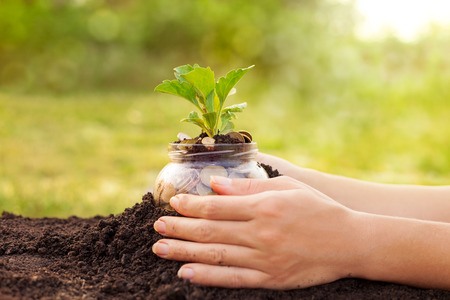 Woman hands taking care of money jar covered with soil Stock Photo