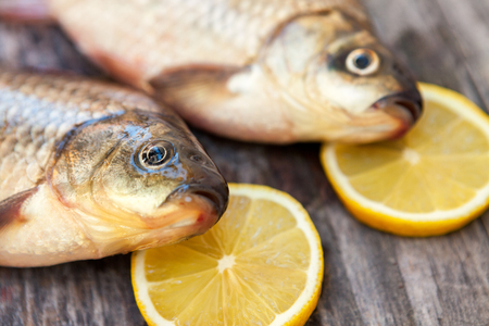 carassius gibelio: Fresh carp ready for cooking with lemon on the side Stock Photo