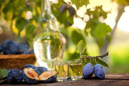 rakia: Serbian homemade rakia in two shot glasses with plums on the table Stock Photo