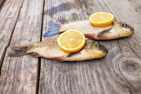 carassius gibelio: Carp on the table with lemon on the side