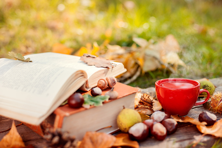 Book, autumn leaves and tea cup with chestnuts and hazelnuts on wooden surface