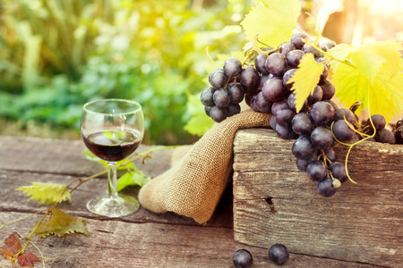 Glass of tasty red wine and grapes on wooden table