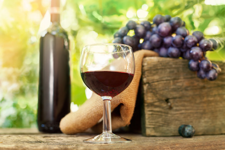 Glass of delicious red wine with grapes and bottle in the background