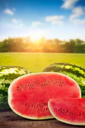 Sliced fresh watermelon on the table