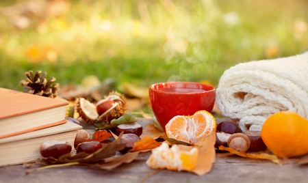 Autumn fallen leaves, books with hot drink and citrus Standard-Bild