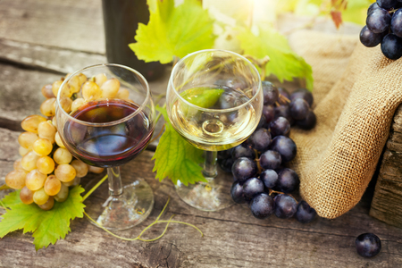 Tasty red and white wine in glasses with fresh grapes on wooden table