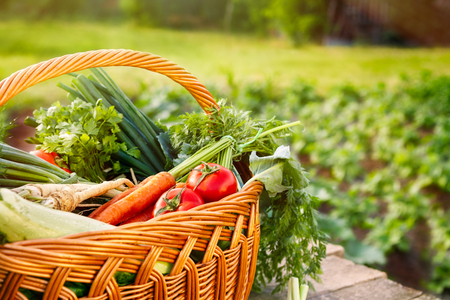 Mixed organic vegetables and wicker basket on wooden table
