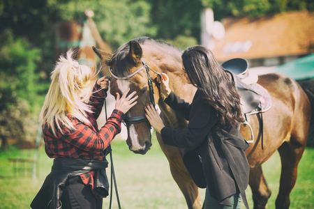 sweet adorable horse cuddle with two women, friendship between animal and people