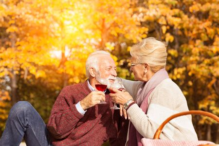 Cheerful middle aged couple toasting wine glasses
