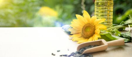 Sunflower oil and sunflower seeds on rustic wooden table. Organic and eco food concept. Healthy food and fats.