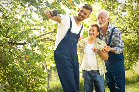 Three male generation picking apricot in orchard and make selfie with smart phone