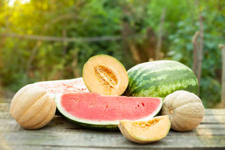 Sweet slices of watermelons and melons, summer juice fruits