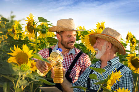 Two farmers with tablet examine their field with sunflowers. Agricultural business concept.  Farmers walk in flowering field. Foto de archivo