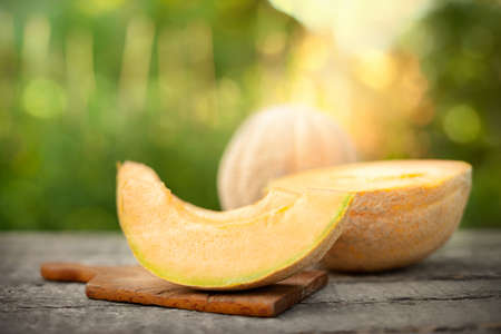 Slice of sweet juice melon over summer day Foto de archivo
