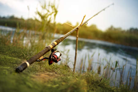 Lone fishing rod on the shores of the lake
