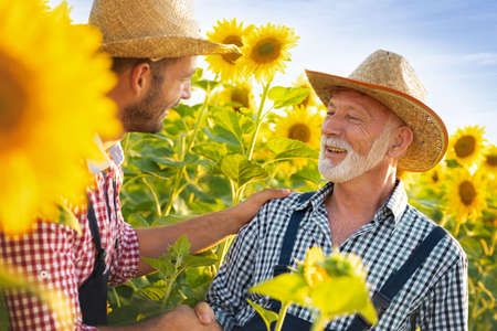 Happy farmers with straw hats standing in sunflowers field and  shaking hands. Partnering up to bring quality produce Foto de archivo