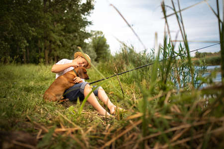 Young boy in hug with his dachshund sitting Foto de archivo