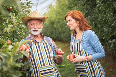 Portrait of two happy farmers in orchard Foto de archivo - 154726214