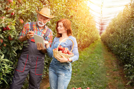 Farmer couple using digital tablet at the farm Foto de archivo