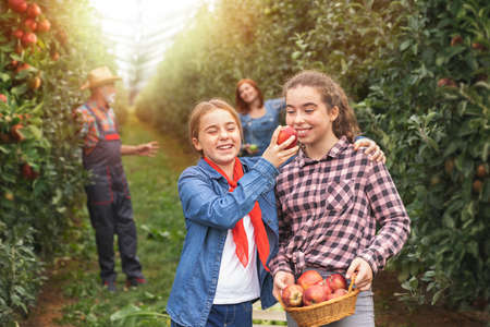 Nice two sisters smiling and having fun in grandparent's orchard in apples