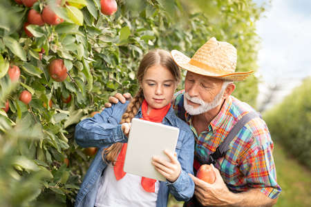 Young girl with tablet helping his grandfather in orchard Foto de archivo - 154726247