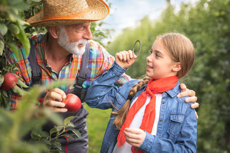 Little girl with old man having fun in apple orchard Foto de archivo - 154726248