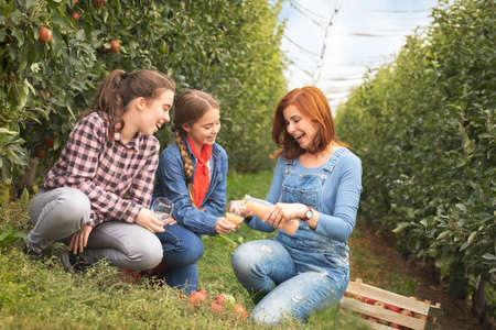 Happy family drinks organic apple juice in apple orchard