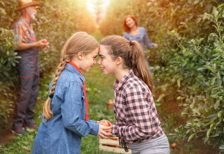 Full length of happy sisters standing in orchard and playing face to face Foto de archivo