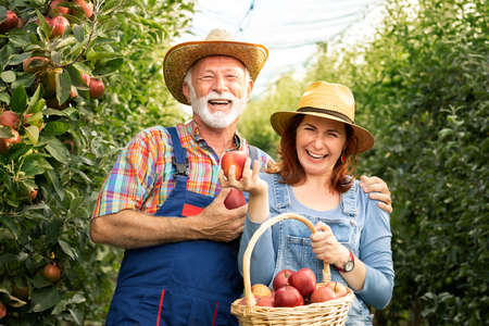 Smiling senior man with his daughter in apples orchard