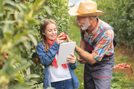 Granddaughter and grandfather fun with digital tablet together in grandparent's orchard