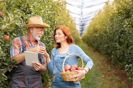 Two farmer woman and man standing in orchard with digital tablet Foto de archivo