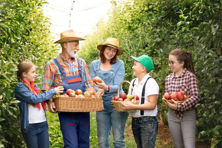 I love our moments in the countryside. Smile family on farmland. Couple with child of farmers seedling time in the apples orchard. Family harvesting apple Foto de archivo