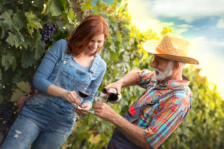Couple drinking wine outdoor in vineyard while working on the field of grape