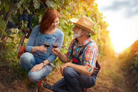 Portrait of young smiling man and woman tasting wine at winery vineyard - Young people enjoying harvest time together.
