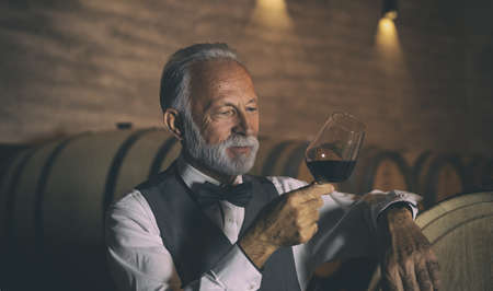 Handsome senior man standing in a wine cellar with a glass of red wine Archivio Fotografico