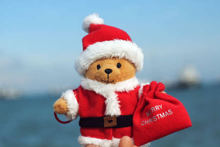soft toy: cute paddington bear soft toy wish you a merry christmas