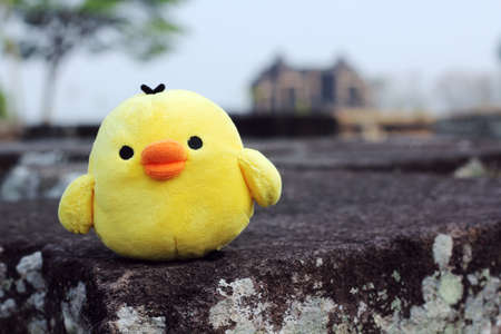 soft toy: little yellow chicken soft toy Stock Photo